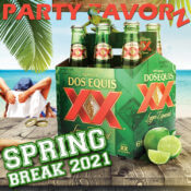 Spring Break 2021 | Dance Club Party Anthems!